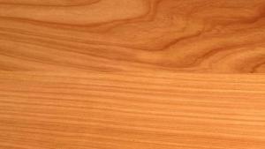 timber macrocarpa